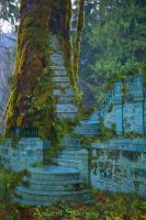 Ancient Stairway by rustymermaid