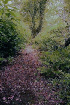 Northumberland Woodland by Nigel-Hirst