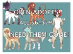 LEFTOVER ADOPTABLES! [ 1/ 5 OPEN ] by Vessy-Adopts