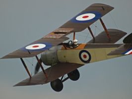 Sopwith Pup by davepphotographer