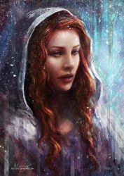 The North Remembers by Westling