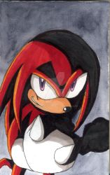 Heroes in the shadow - Knuckles by aggieandco