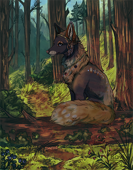 In the forest by IsaviDog