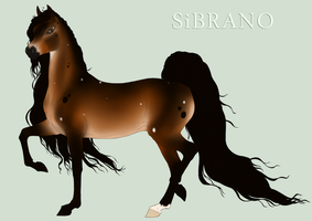 Sibrano Import 2013 By Equneinc - point sale by Danesippi