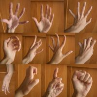 Hand 5 by ShiStock