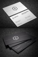 2 in 1 Black and White Business Card by nazdrag