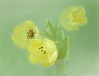 Yellow tulips by yellika
