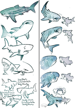 Whale Shark and Great White Shark by sharkie19