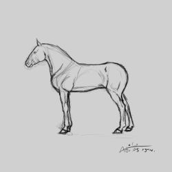 WIP#4 Horse by Aiclo