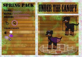 (updated) Anika .:Under The Canopy Application:. by star-draws-trash