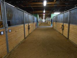 Stable Hallway by MollyMay335