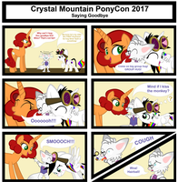 CMPC2017 Saying Goodbye by Lightning-Bliss