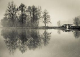 one of the bridges to my wonderland by ateist-kleranty