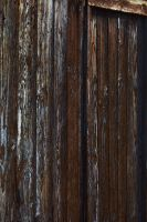 Wooden Texture 4 by stock-photo