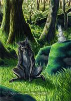 The Wolf and the Rabbit by GoldeenHerself