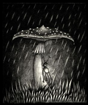 The Toadstool by LadyFromEast