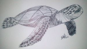 Tortue by LoiseFenollCreation