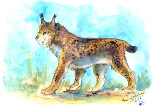 Endangered#3 - Iberian Lynx by LuckyStarhun