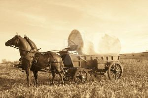 On the wagon trail. by CatWink