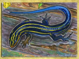 ACEO/ATC: Fived-Lined Skink by crocodiledreams