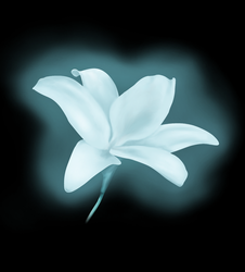 The Luthem Flower by NorthernMyth