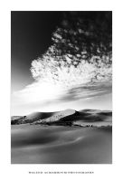 Dunes IV by waleed-DP