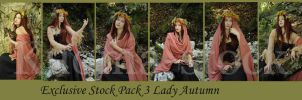 Lady Autumn Exclusive Stock Pack 3 by Kuoma-stock