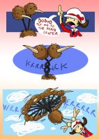 DODUO USED FLY