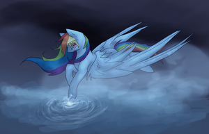 Flight over silent water by Risketch