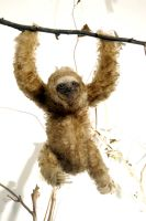 Poke: Papoose Sloth by Je-Suis-Lugly