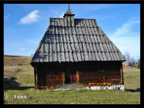 Traditional house_01 by Shommy