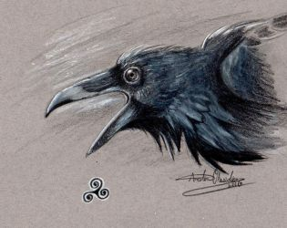 Raven Doodle (Update) by BipolarNonsense