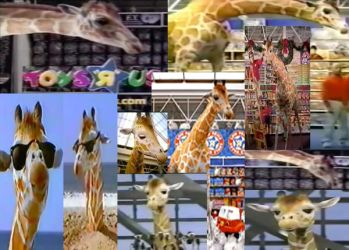 Toys R Us Geoffery Giraffe Collage by Siluntwolf