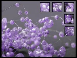 Abstract violet... by lauchapos