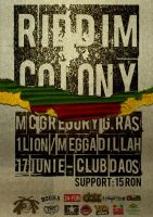 Riddim Colony Flyer by VladFilip