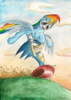 Sonic and Rainbow Dash by SoulEaterSaku90