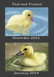 Past and Present Ducklings ~please stop faving by angel223456