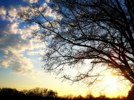 The World Glowed Today by CassidyLeora