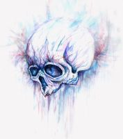 Watercolor skull :) by StasZelen