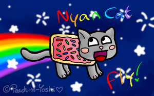 AWESOME FACE NYAN CAT FLY :D by Peach-X-Yoshi