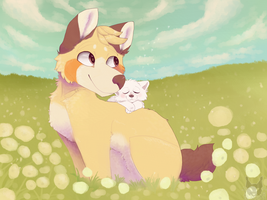 Dandelion field (AT) by Ao-No-Lupus