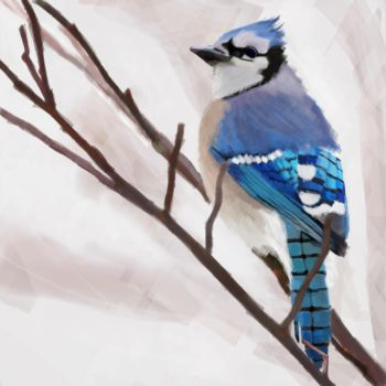 Jay by Alison-charlie