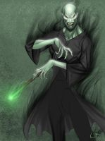 Deathly Hallows-Lord Voldemort by Leandroton