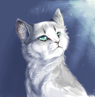 Snowfur .:photoshop practice:. by alphafury