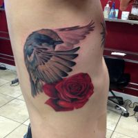 Bird and rose Tattoo by Mike Ashworth by Mikeashworthtattoos