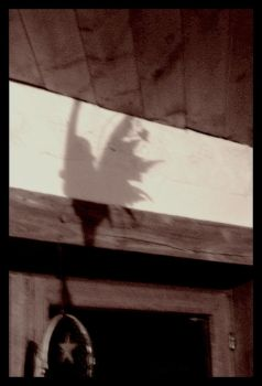 Fairy On The Wall by p0r-n0graphiie