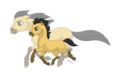 From Colt to Stallion by Almairis