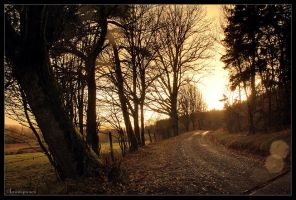 Path to the Setting Sun by FlorentCourty