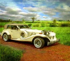 Car and Background by SolStock