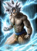Ultra instinct by JPKegle